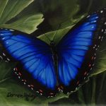 Blue Morph original acrylic painting by Canadian artist Darren Haley