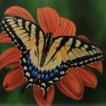 Swallowtail Butterfly original acrylic painting by Canadian artist Darren Haley