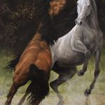 Sparring Horses Original acrylic painting by Canadian artist Darren Haley