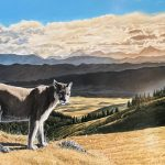 Mountain Lion original acrylic painting by Canadian artist Darren Haley